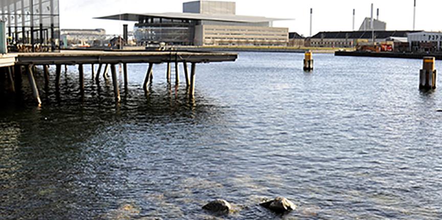 Sommertur i Københavns Havn